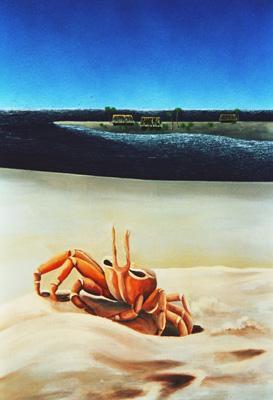 granchio-spiaggia